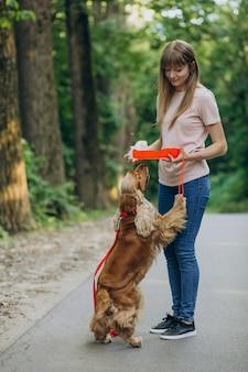 Promeneur d'animaux se promenant avec un chien cocker