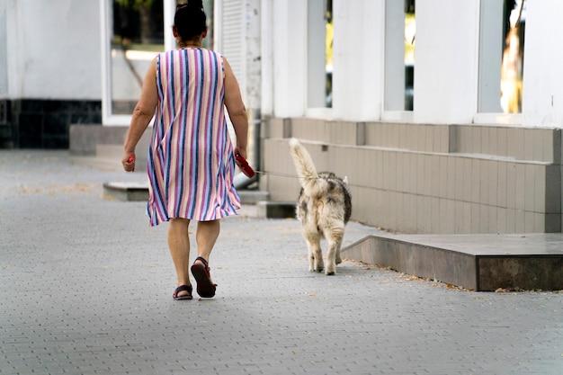 Un propriétaire d'animal marchant avec un animal à l'extérieur