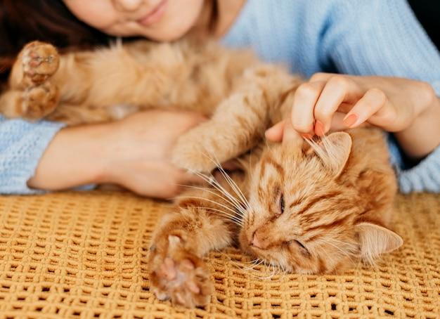 Propriétaire caresser un chat adorable