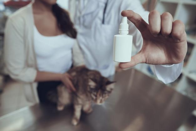 Propriétaire de chat traitant animal de compagnie femme détient gouttes pour les yeux