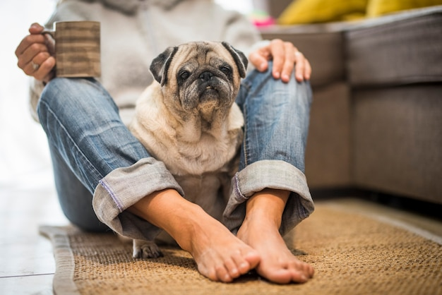 Propriétaire de femme agréable et amusant et vieux chien carlin à la maison appréciant la relation et le concept des meilleurs amis pour toujours