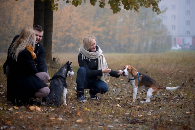 Les propriétaires d'animaux avec des chiens husky et beagle sibériens s'amusent dans le parc de la ville un matin d'automne