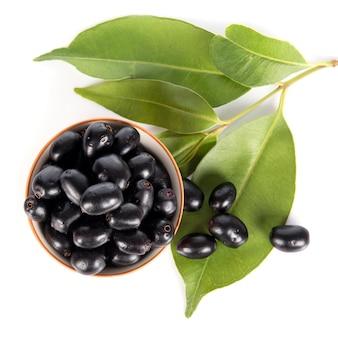 Prune du jambolan ou prune de java (syzygium cumini)