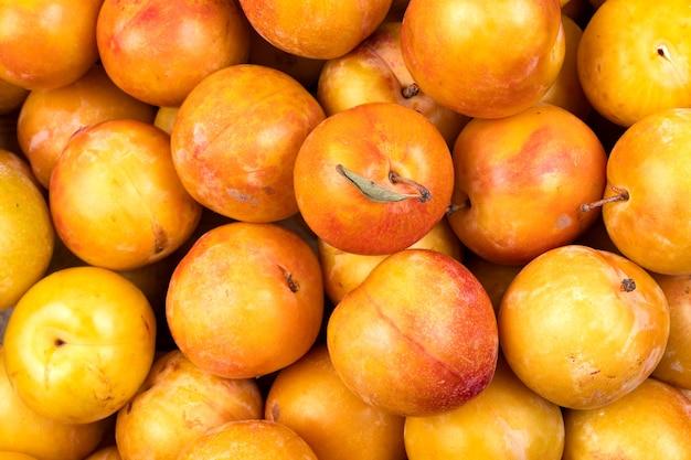 Prune jaune comme gros plan de fond. légumes frais du marché