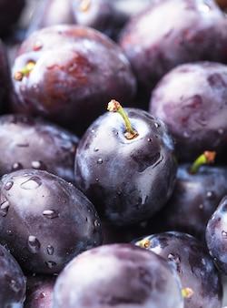 Les prunes humides charnues se bouchent en arrière-plan