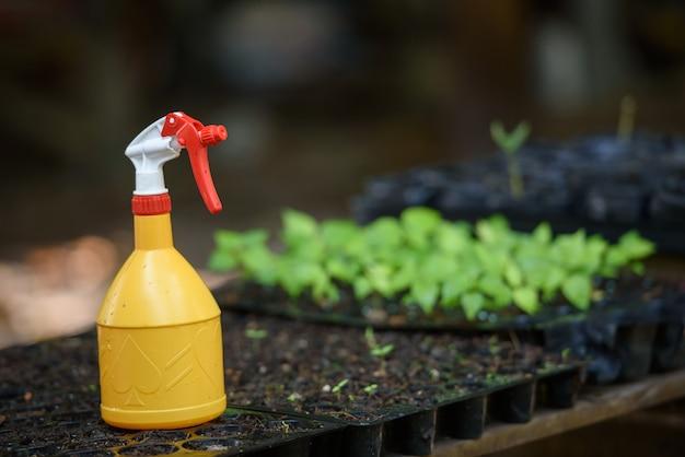 Pulvériser de l'eau sur les plants.