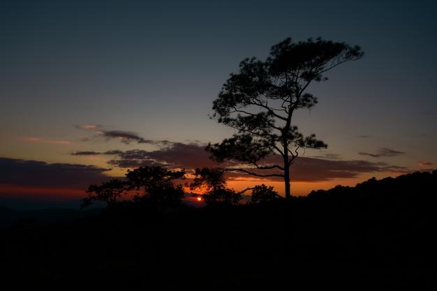 Quand le soleil se couche sur la colline.
