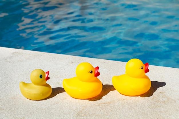 Quatre canards en caoutchouc jaune dans une rangée près d'une piscine