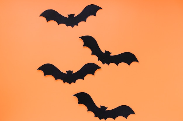 Quatre chauves-souris préparées pour halloween