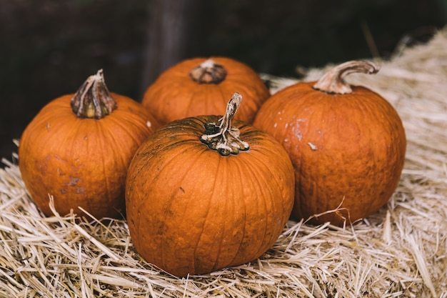 Quatre citrouilles sur un bloc de paille dans une scène rurale d'halloween
