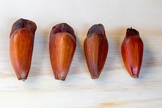 Quatre graines de pin araucaria, cuisine traditionnelle brésilienne.