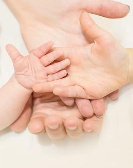 Quatre paumes de main de famille au fond d'isolement blanc, père de mère et deux enfants