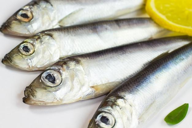Quatre petits poissons hareng et un morceau de citron