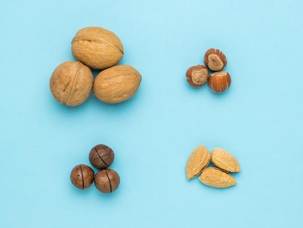 Quatre types de noix sur fond bleu clair.