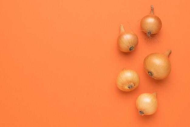 Quelques bulbes mûrs sur fond orange. récolte d'automne. espace pour le texte. mise à plat.