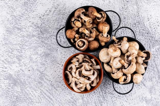Quelques champignons bruns et blancs avec des champignons tranchés dans un bol et des pots sur une table grise