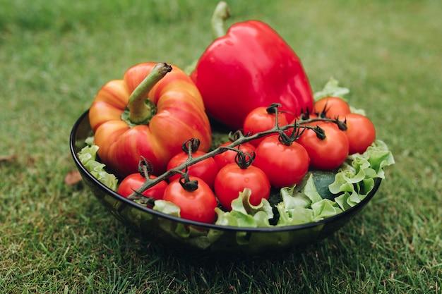 Quelques légumes frais appétissants dans l'assiette sur l'herbe verte au jour d'été ensoleillé