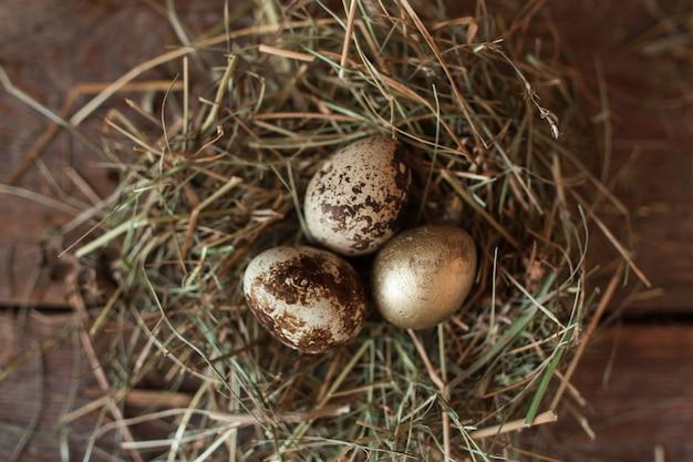 Quelques œufs colorés dans un nid de paille