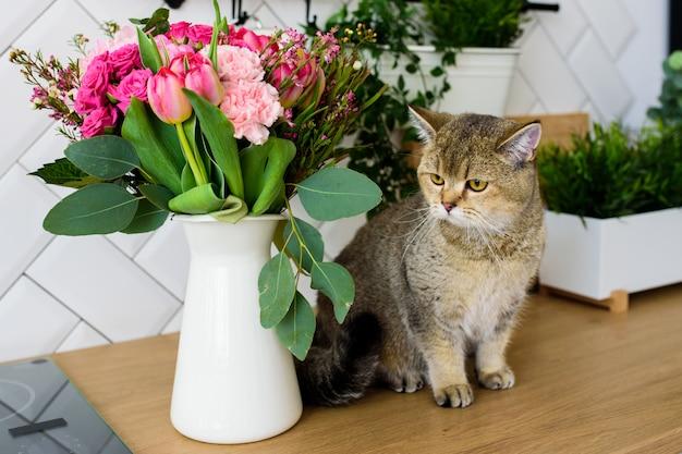 Race de chat chinchilla gris à côté d'un bouquet de fleurs dans un intérieur de cuisine moderne