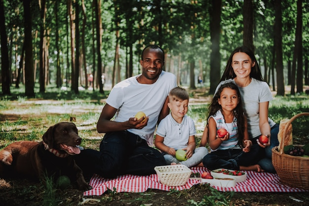 Race mixte famille pique-nique ayant des aliments sains