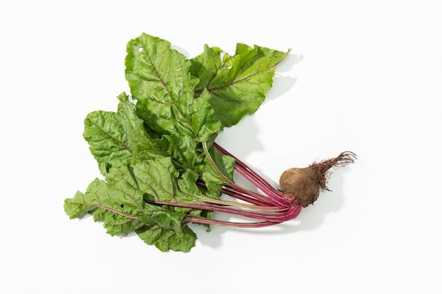 Racine de betterave rouge avec des feuilles isolées sur fond blanc. beta vulgaris