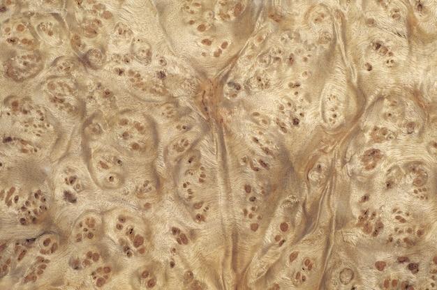 Racines de placage de bois de texture décorative