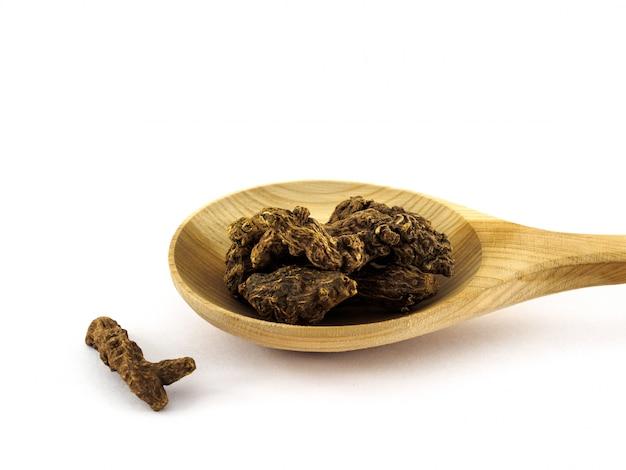 Les racines sèches de potentilla erecta ou kalgan ou lapchatka se trouvent dans une cuillère en bois sur fond blanc