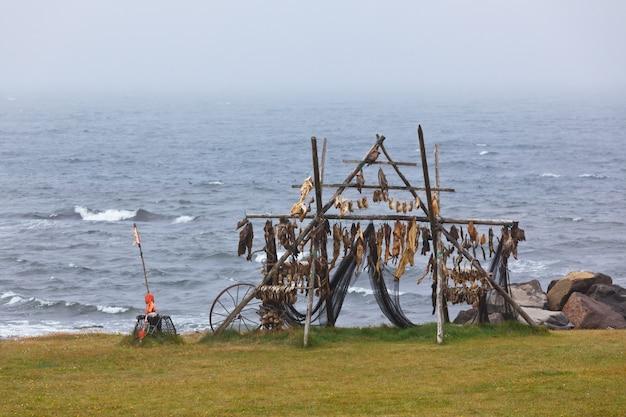Rack pour le séchage du poisson en islande
