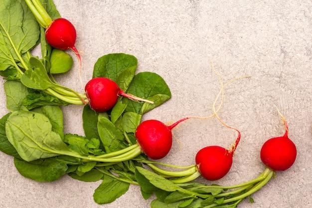 Radis bio frais. fond de pierre de cuisson des aliments. concept alimentaire végétarien sain (végétalien), vue de dessus, espace copie, mise à plat, gros plan.