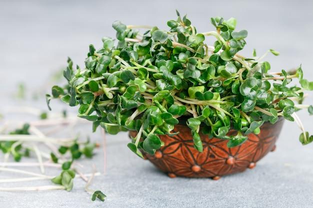 Radis verts crus ou micro-verts de daikon