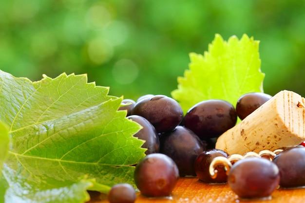 Raisin, feuille, liège - arrière-plan flou pour le vin rouge