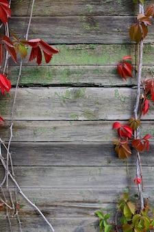 Raisins d'automne fond en bois