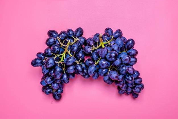 Raisins noirs juteux organiques naturels sur un fond rose tendance