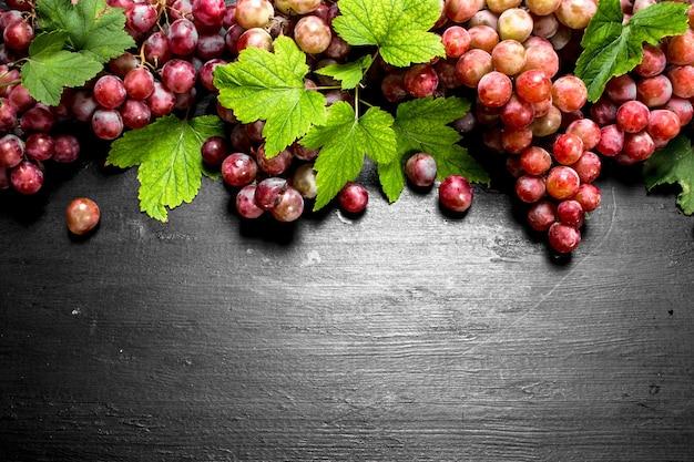 Raisins rouges avec des feuilles sur tableau noir.