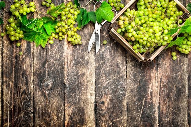 Raisins verts dans une boîte sur table en bois.