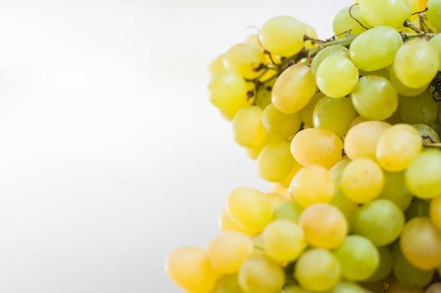 Raisins verts sur fond blanc