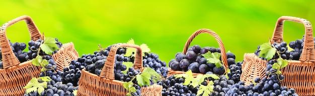 Raisins de votre jardin préféré