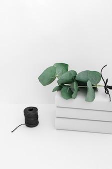 Rameau sur livre empilé avec une bobine noire isolée sur fond blanc