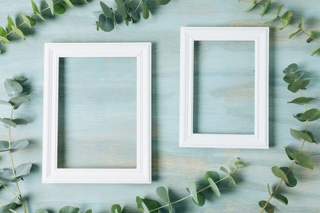 Rameau vert feuilles autour du cadre de la frontière blanche sur fond de texture bleu
