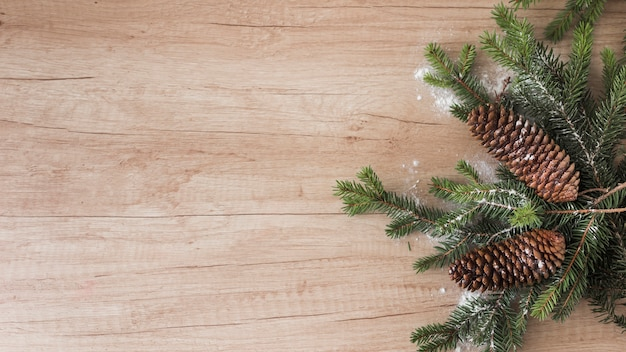 Rameaux de conifères, chicots et neige d'ornement
