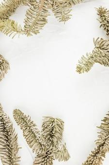 Rameaux de conifères décoratifs