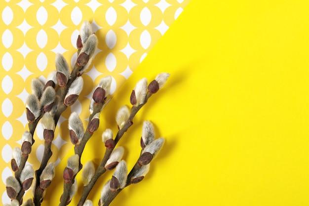Rameaux de saule avec chatons sur fond jaune. fond plat floral printanier. carte de voeux de printemps avec un espace pour le texte.