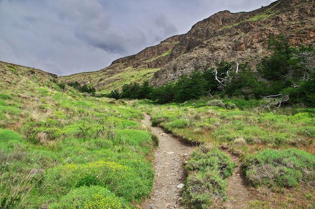 Randonnée sur le parc national los glacier fitz roy, el chalten, patagonie, argentine