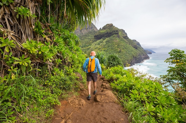 Randonneur sur le sentier dans la jungle verte, hawaii, usa