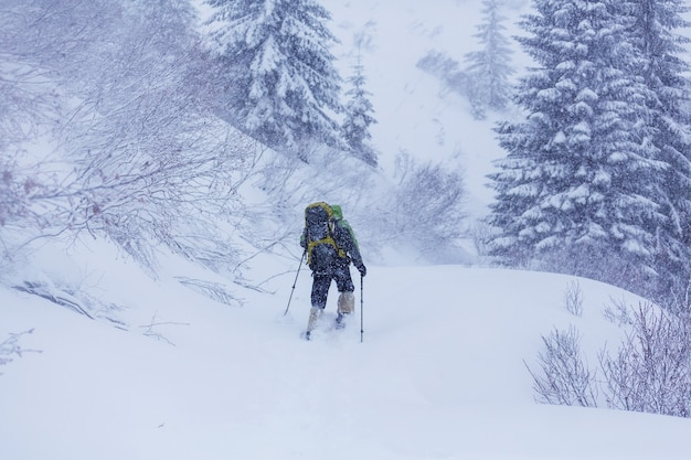 Randonneurs dans les montagnes d'hiver