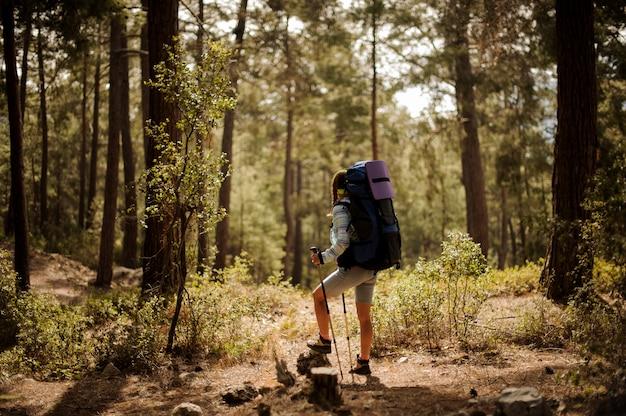 Randonneuse se déplace avec des bâtons à travers la forêt