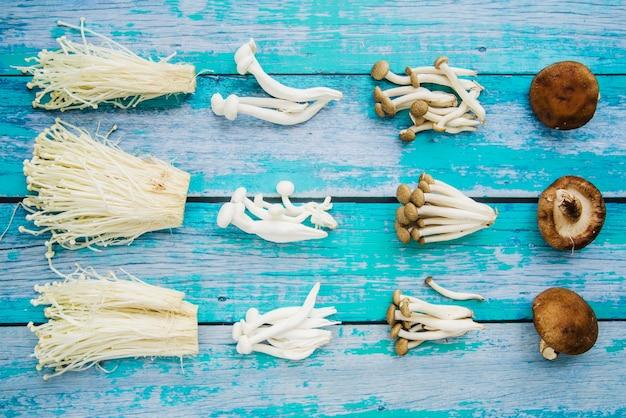 Rangée de divers champignons disposés sur une planche de bois patinée