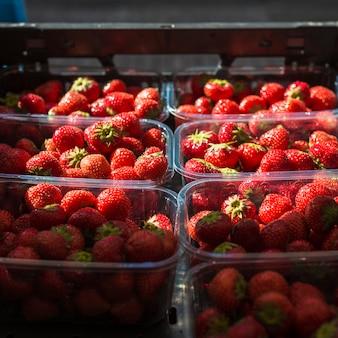 Rangée de fraises biologiques fraîches dans le récipient en plastique
