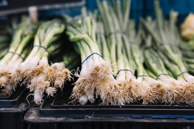 Rangée d'oignons verts attachés avec du caoutchouc sur une caisse