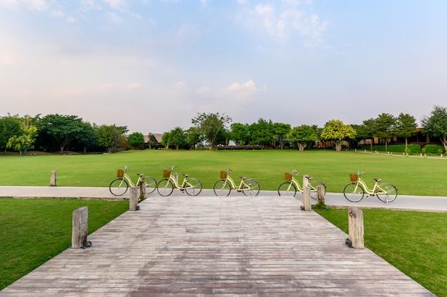 Rangée rétro vélos de stationnement dans la rue dans un parc verdoyant